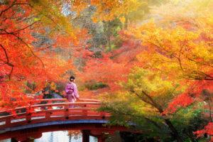 秋の紅葉と着物の女性